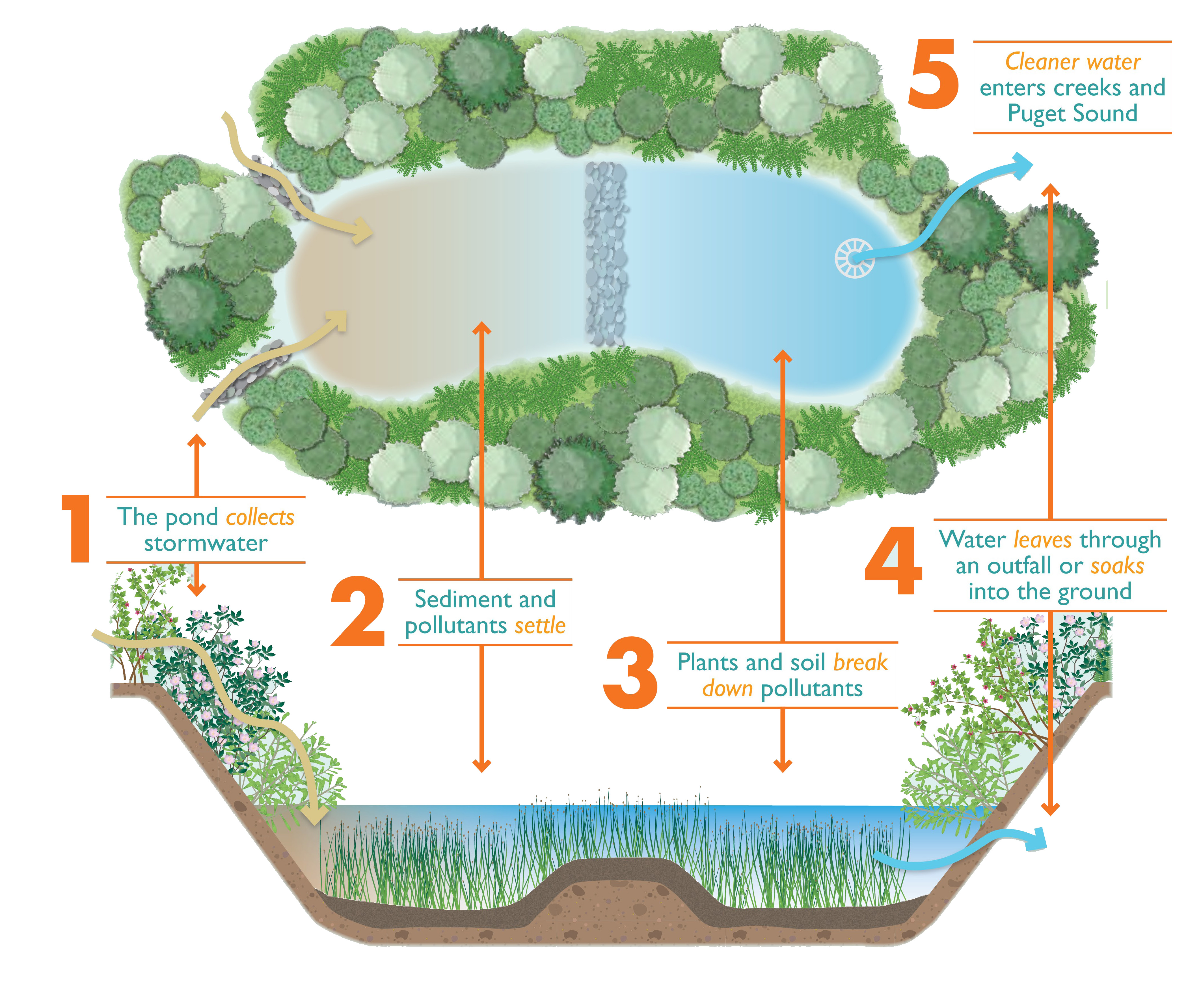 Critical concrete water system home recipes critical for Pond water system